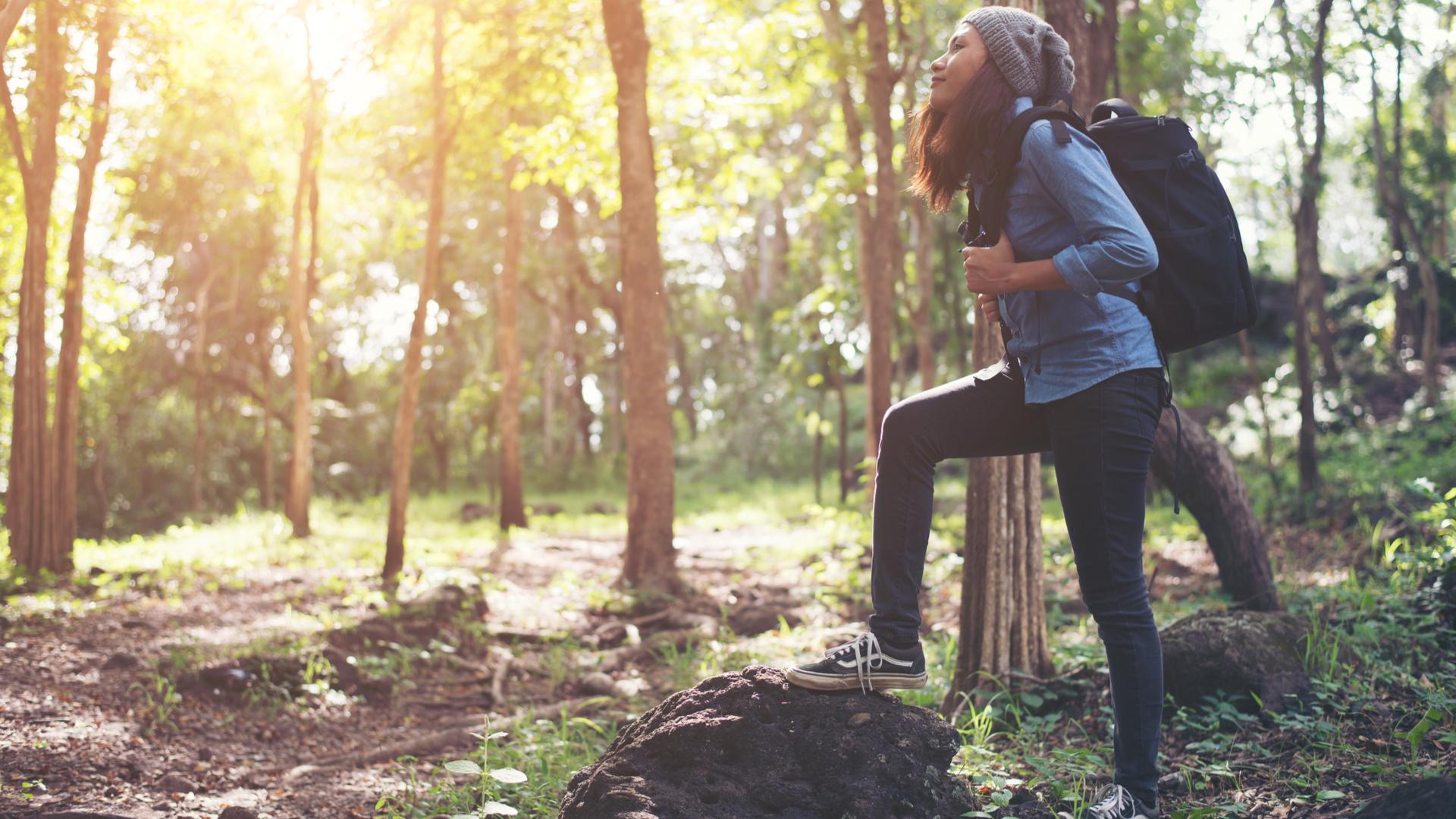 Une randonnée exceptionnelle et enrichissante dans la forêt de Saou